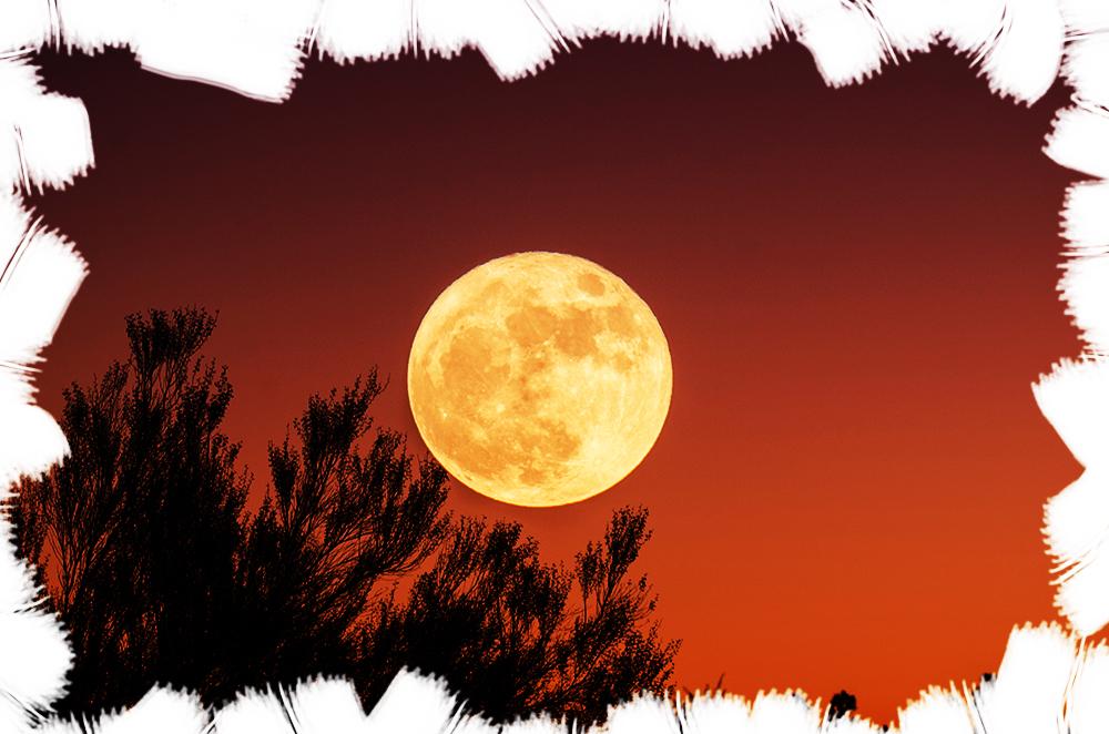 Nopți cu lună plină